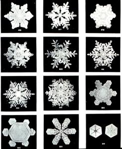 Snowflakes courtesy of NOAA